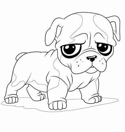 Bulldog Coloring French Pages Dog Printable Bulldogs