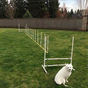 17 best images about dog agility equipment on pinterest With best dog agility equipment