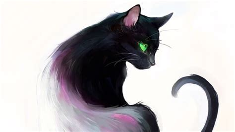 drawn black cat beautiful cat pencil   color drawn