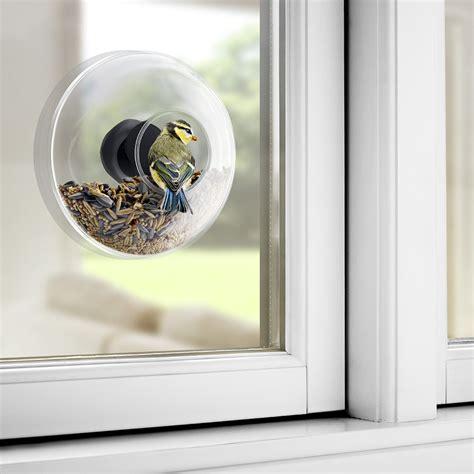 window bird feeder window bird feeder until