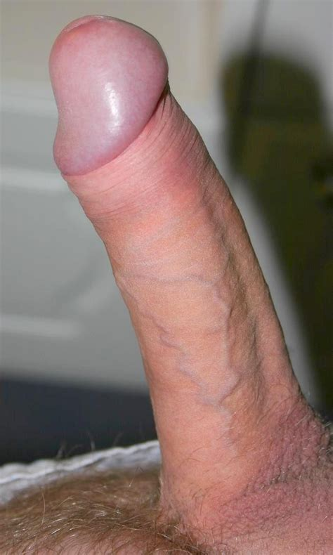Hi In Gallery My Beautiful Wet Sweet And Smelly Cock