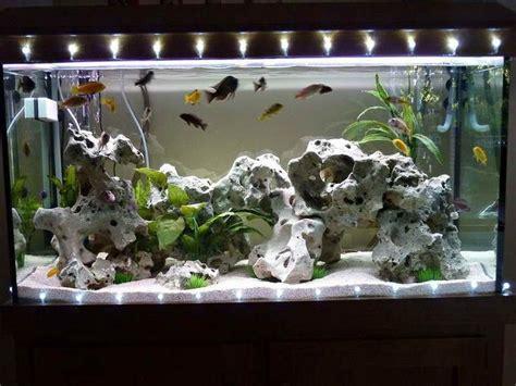 aquarium decorations images  pinterest fish