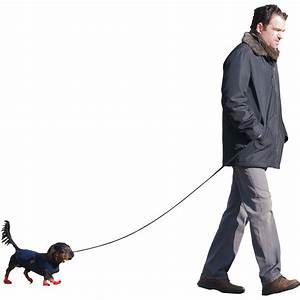 Dog Walking Png