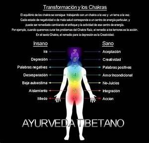 El equilibrio de los Chakras (en español) | ZEN ...