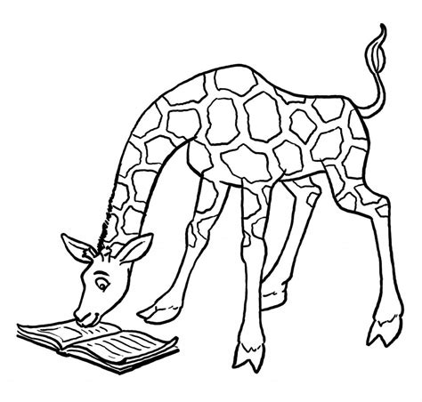 birds and giraffes coloring pages free printable giraffe coloring pages for 5947