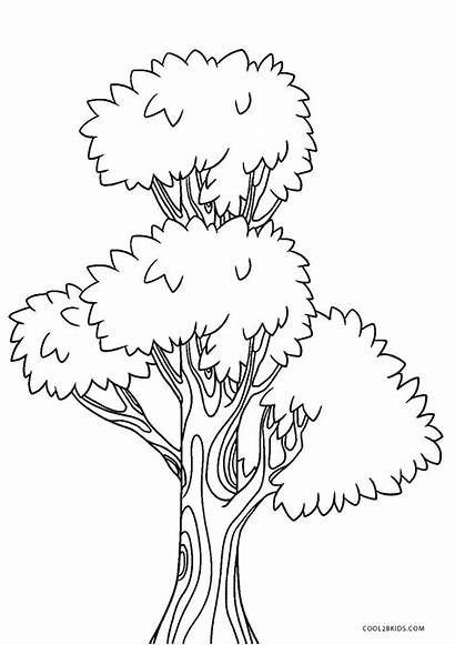 Coloring Tree Printable Pages Cool2bkids