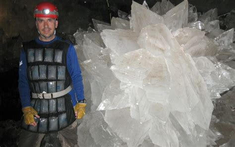 nasa revives weird life forms trapped  crystals