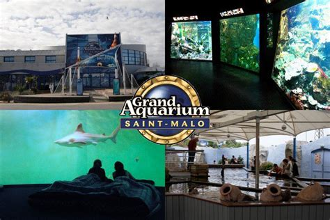 aquarium st malo horaires grand aquarium st malo rue du g 233 n 233 ral patton 35400 malo informations news avis