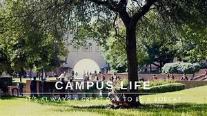 Campus Life : Office of Undergraduate Admissions : Texas ...