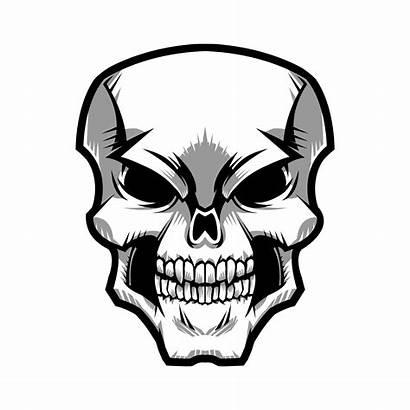 Skull Vector Graphic Clipart Graphics Vectors Keywords