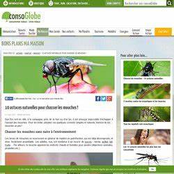Comment Chasser Les Mouches : insecticides r pulsif maison pearltrees ~ Melissatoandfro.com Idées de Décoration