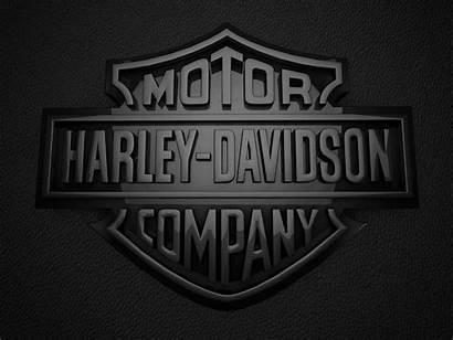 Davidson Harley 3d Logos Skull Wallpapers Desktop