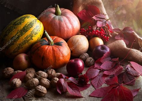 composition cuisine autumn food design decoration composition with rustic