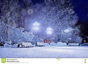 Winter Night. Winter Landscape- Winter In The Night Snowy ...