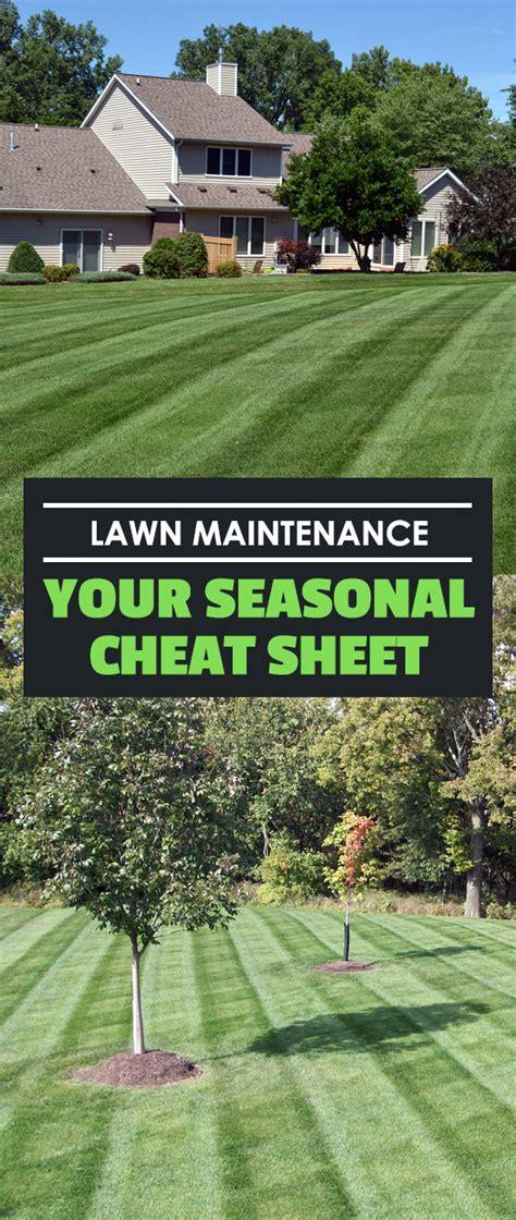 lawn maintenance your seasonal cheat sheet