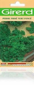 Semis De Persil : graines semis persil fris sachet g ant 12 g ~ Dallasstarsshop.com Idées de Décoration