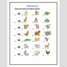 Animals  Interactive Worksheet
