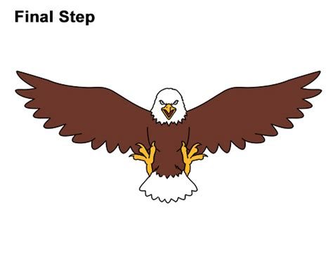 How To Draw A Bald Eagle (cartoon) Video & Step-by-step