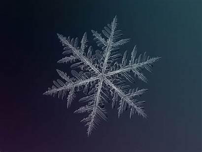 Snowflakes Today Stunning Desktop Types