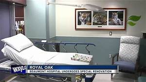 Beaumont shows off new pediatric emergency center in Royal ...