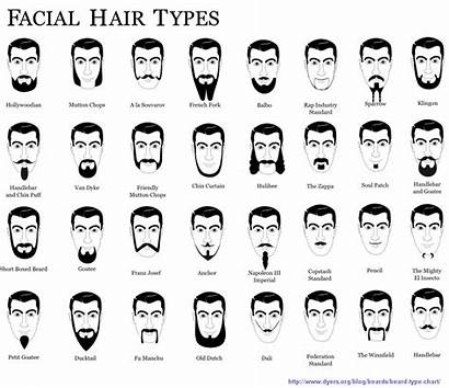 Facial Hair Beard Styles Types Guide Different