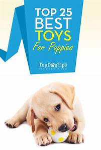 Top 25 best puppy toys for teething and dogs that chew a for Best dog toys for dogs that chew
