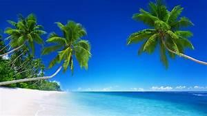 Wallpaper Beach, Tropical, Sunny, Beautiful, 5K, Nature, #1651