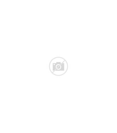 Frame Gold Victorian Frames Paintings Oil Canvas