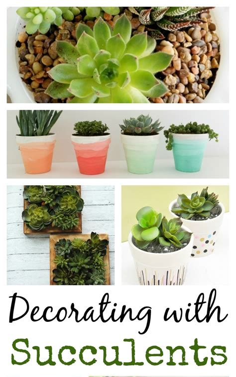 ideas for planting succulents 13 ideas for decorating with succulents town country living