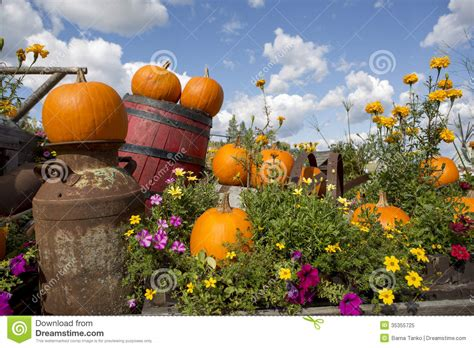 Garden Decoration Free by Seasonal Garden Decorations Stock Image Image 35355725