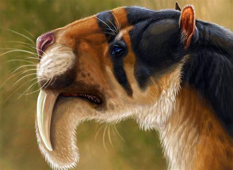 thylacosmilus animals america south marsupial marsupials extinct predatory dinoanimals