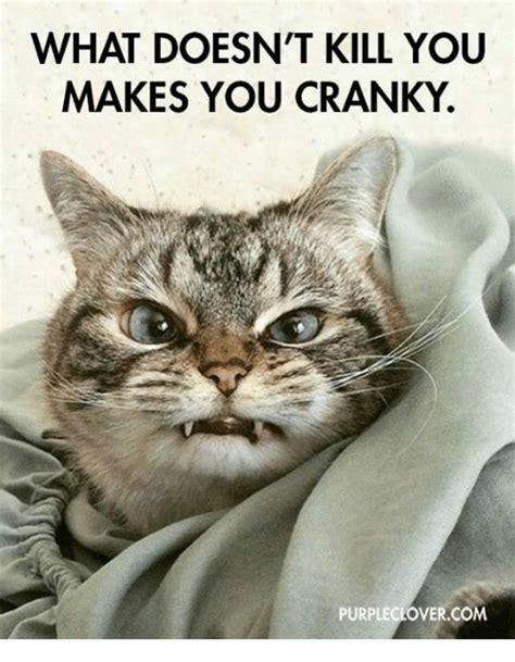 Cranky Meme - 25 best memes about what doesnt kill you what doesnt kill you memes