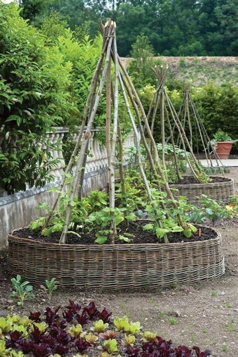 above ground trellis flowers and gardening
