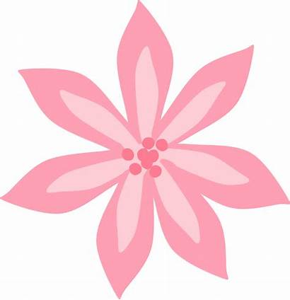 Lily Pink Clipart Lilies Stargazer Lilly Openclipart