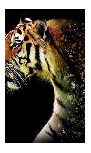 Tiger Abstract 4k tiger wallpapers, hd-wallpapers, artwork ...