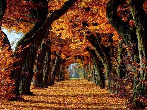 Visbiežāk interesanti fakti par rudeni