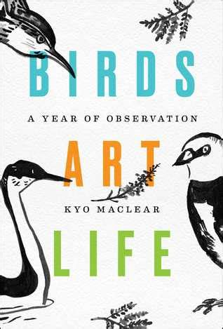 birds art life  year  observation  kyo maclear