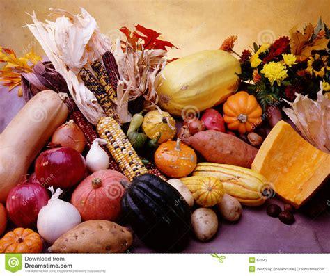 vegetable cornucopia stock photography image