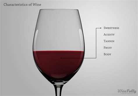 light red wine for beginners the 5 basic wine characteristics wine folly