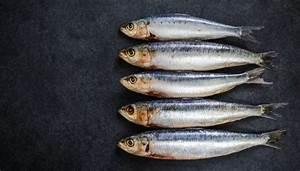 10 Health Benefits Of Sardines  Tarli  Matti