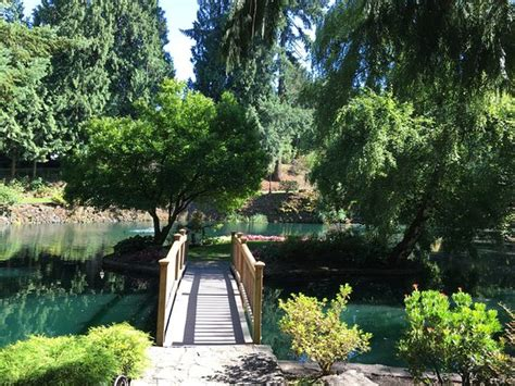 wedding paradise with a downside lakeside gardens