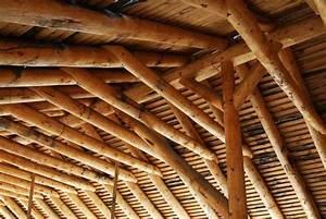 Miglior legno per tetti Terminali antivento per stufe a