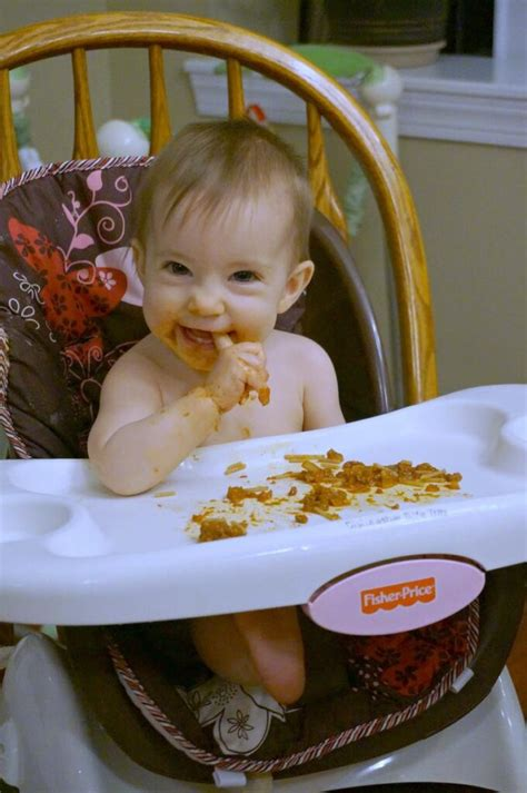 baby led weaning meal ideas  months