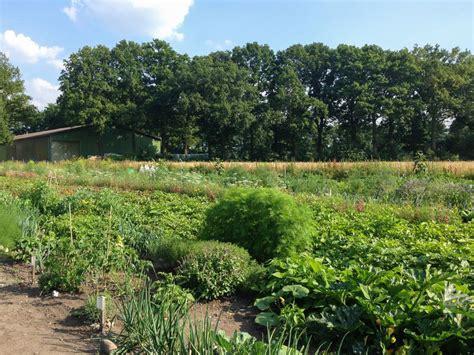 Meine Ernte Miete Deinen Garten In Hamburgnorderstedt