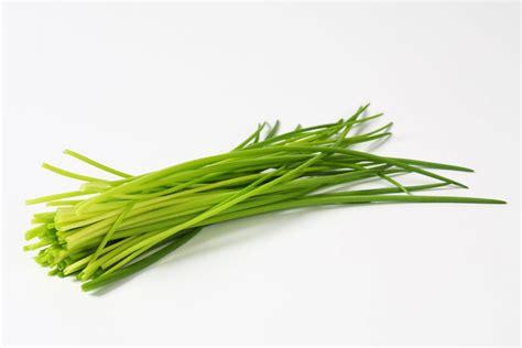 cuisiner dans un wok le top 10 des aromatiques hortus focus i mag