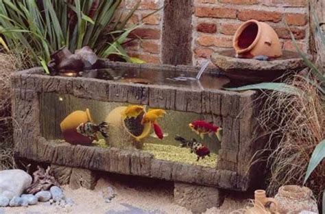 small garden  backyard aquarium ideas  blow  mind