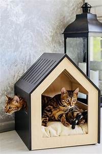 Indoor, Cat, House, Styles, That, Make, Your, Cat, Happy