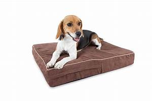 amazoncom orthopedic pound memory foam dog beds washable With ac dog bed