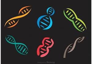 Colorful Doble Helix Icons Vector