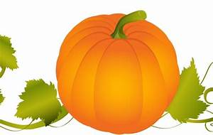 Pumpkin Vector Graphic - Vector download